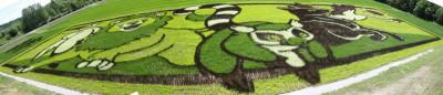 tanboart2012_2.jpg